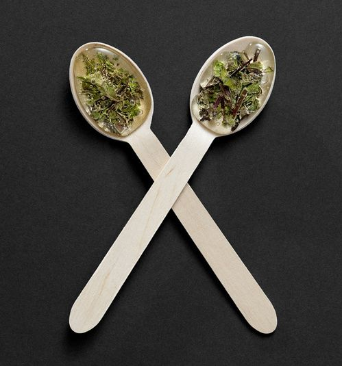T-SPOON peppermint & thyme