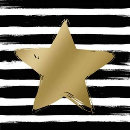 Lunch Star & Stripes black gold