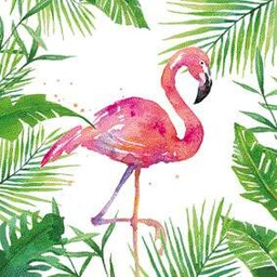 Cocktail tropical flamingo